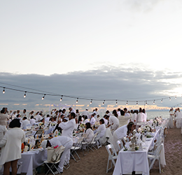 Le-Dîner-en-Blanc-Orange-County-photo-by-Andre-Niesing