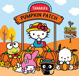 Sanrio-x-Tanaka-Farms-Pumpkin-Patch-photo-courtesy-Tanaka-Farms