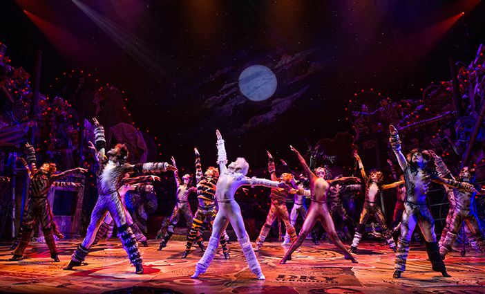 'CATS'-on-Broadway-photo-by-Matthew-Murphy