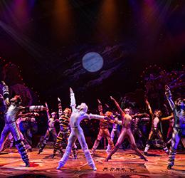 CATS-on-Broadway-photo-by-Matthew-Murphy