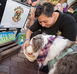 Barks-and-Brews-photo-by-Kait-McKay-Photography