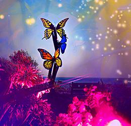 'Casa-Lumina'-photo-courtesy-Casa-Romantica-Cultural-Center-and-Gardens