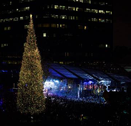South-Coast-Plaza-Annual-Tree-Lighting-photo-courtesy-South-Coast-Plaza