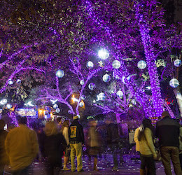 L.A. Zoo Lights photo by Jamie Pham
