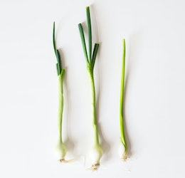 Green onions photo by Laura Mitulla via Unsplash